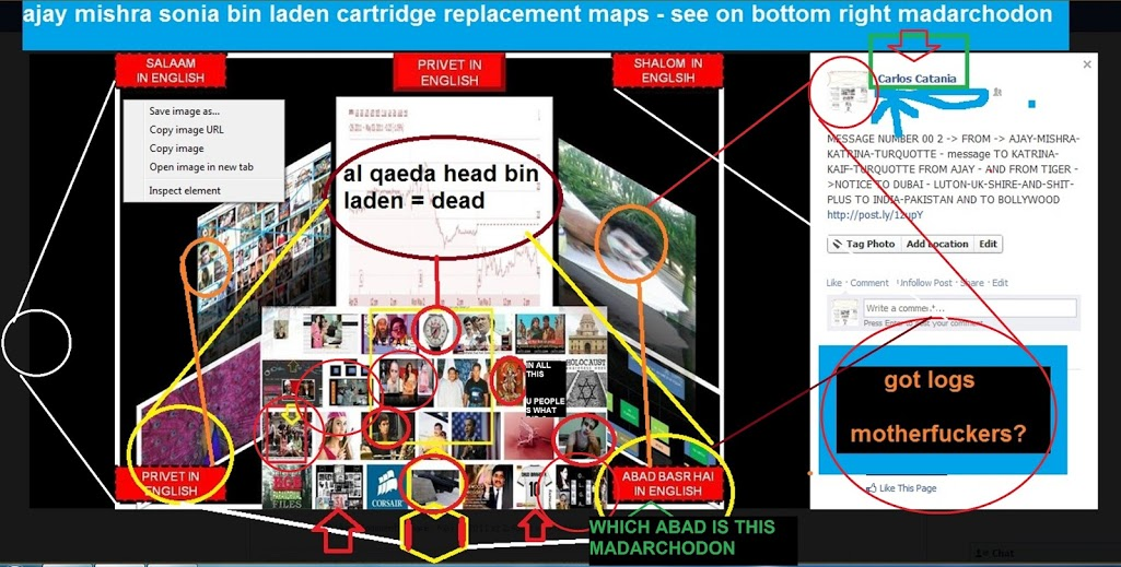 AJAY MISHRA SONIA BIN LADEN CARTRIDGE REPALCEMENT DIAGRAMS AND MAPS