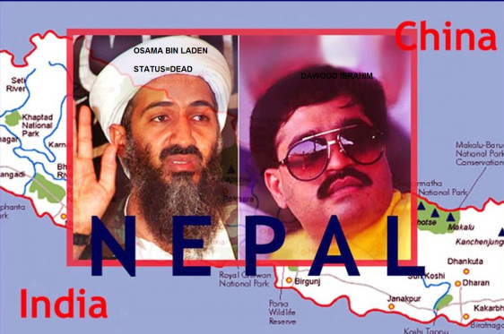 fbe1a-osama-bin-laden-dawood-ibrahim-btw-dawood-ibrahim-owns-has-a-stake-in-safari-constructions-it-seems-there-was-someplace-called-abottabad-or-abboptabad-in-pakistan