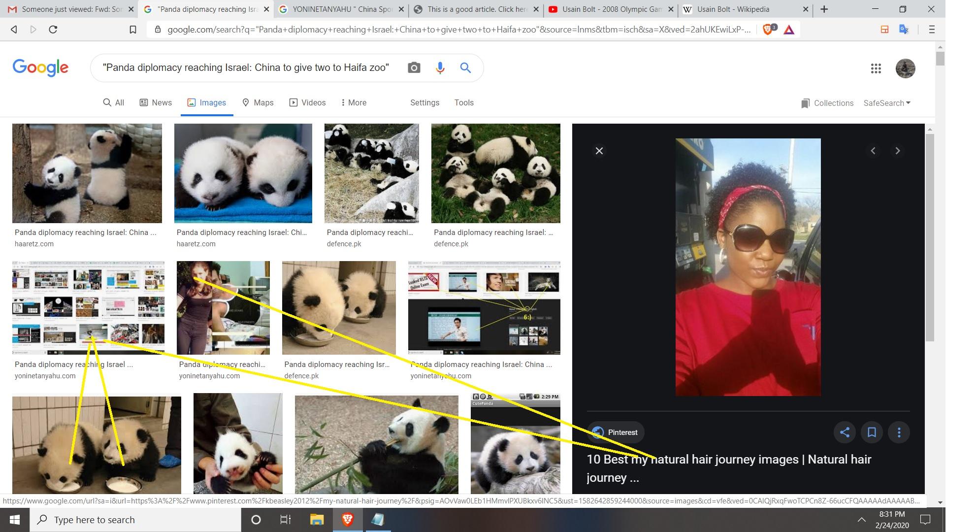 PANDA DIPLOCMANY CHINA AND OGA AND HAIFA AND NESHER REGARDS HOTMAN