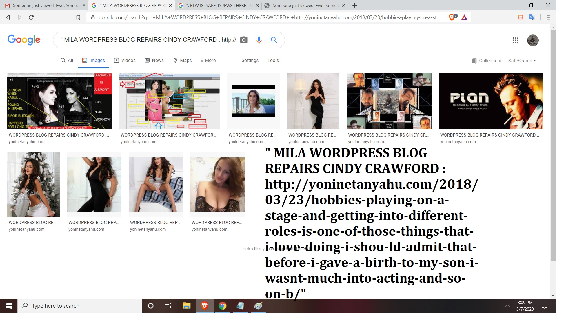 MILA WORD PRESS BLOG REPIARS CINDY CRAWFORD