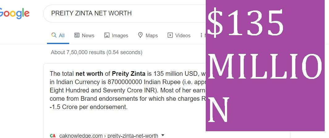 PREITY ZINTA NET WORTH