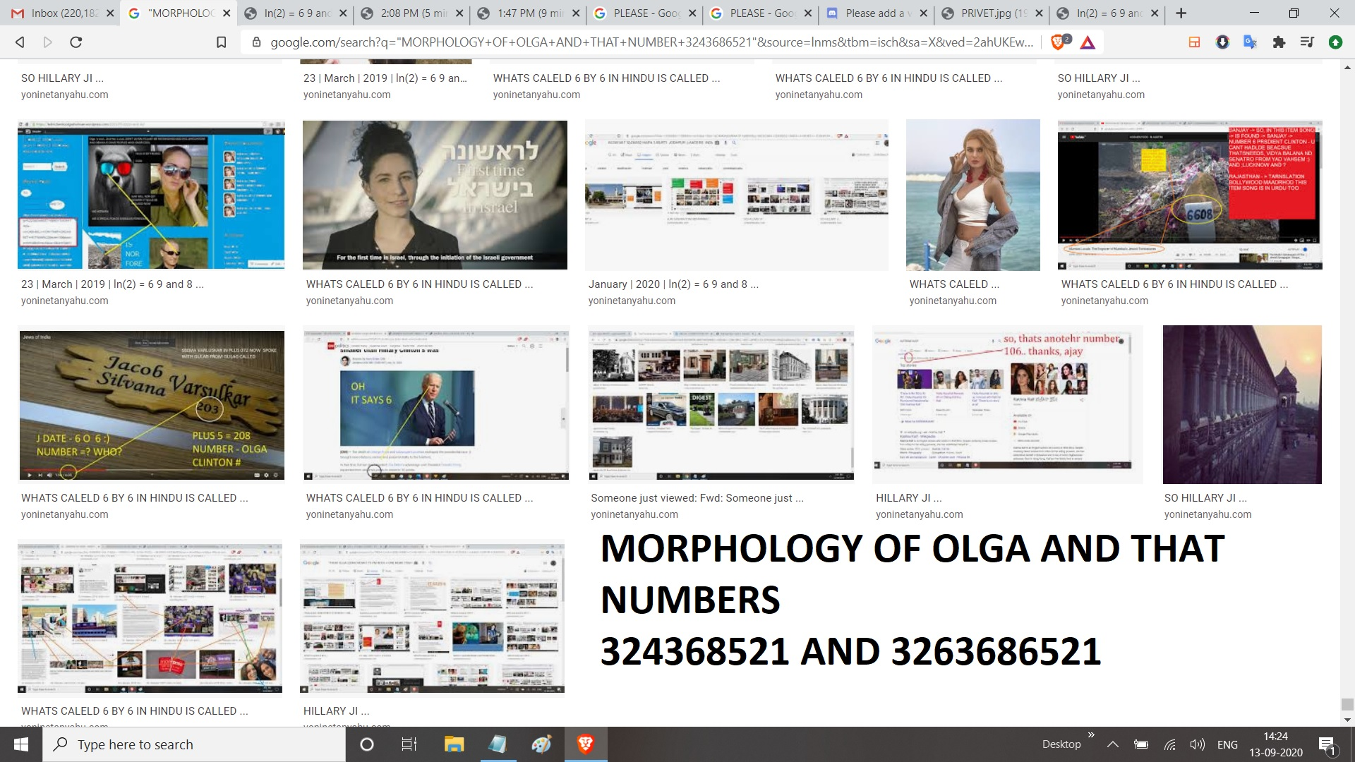MORPPHOLOOGY OF OLGA AND THAT NUMBER 324368521 AND 3243686521