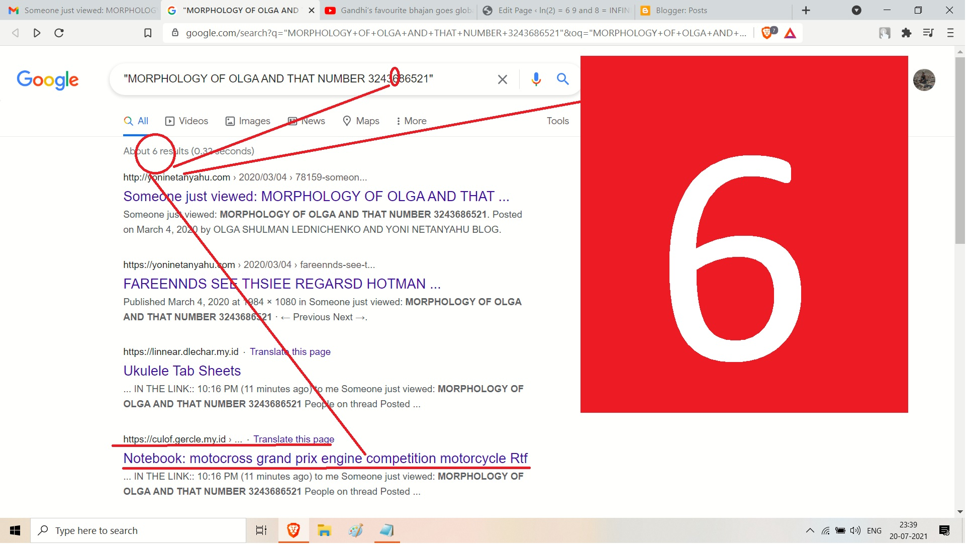 MORPHOLOGY OF OLGA AND ALINA AND OTHERS FROM 324368 -6 - 521 NUMBER ==.=== HOWZ 6