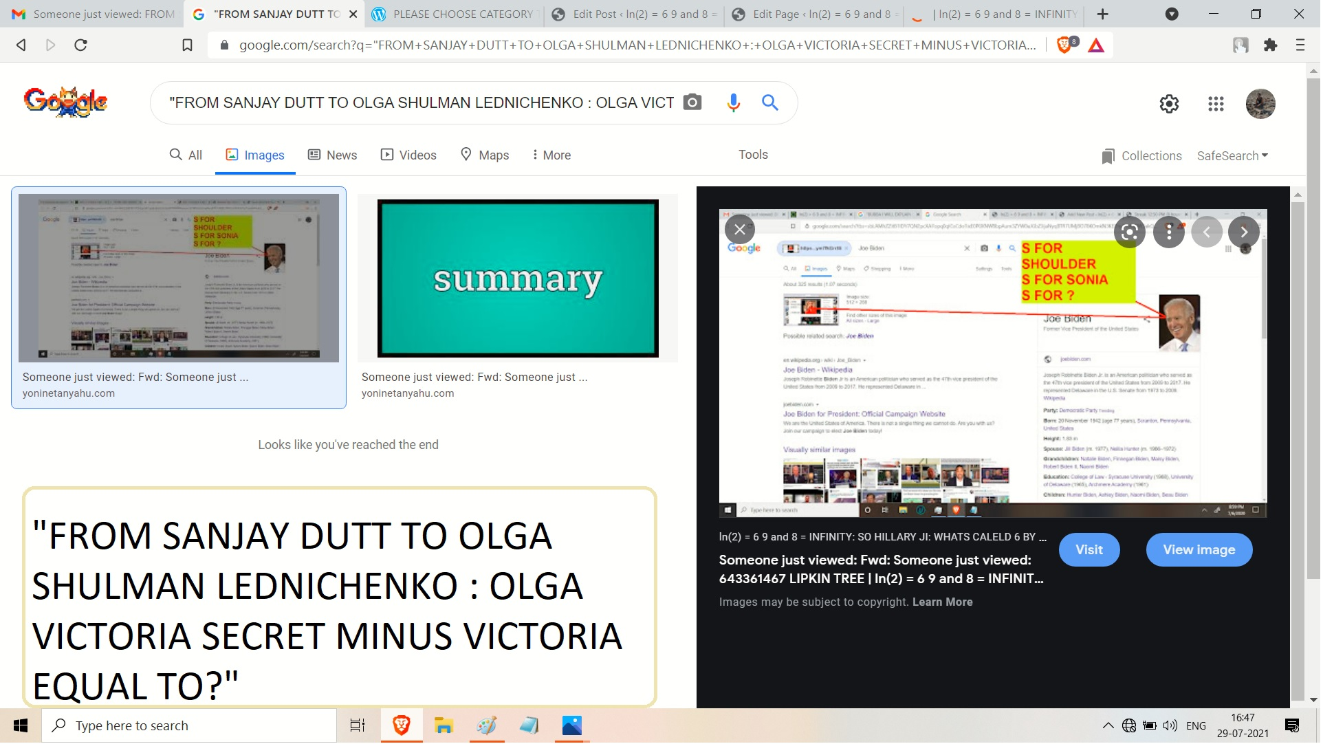 VICTORAI SECRETS ALINA MATSENKO ADN AJAY MISHRA ADN JOE BIDEN